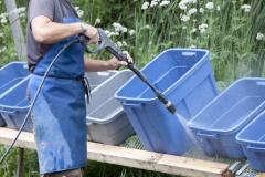 Alex effectuant le nettoyage des bacs de récolte